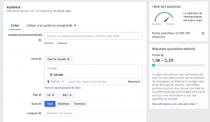 Comment cibler une audience sur facebook ads?
