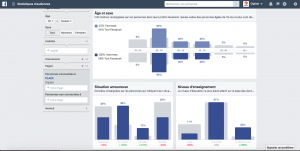 Comment bien connaître son audience grâce à Facebook Audience Insight?
